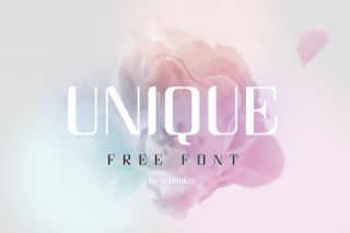 free retro fonts Unique