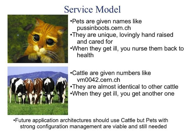 servers_pets_or_cattle.jpg